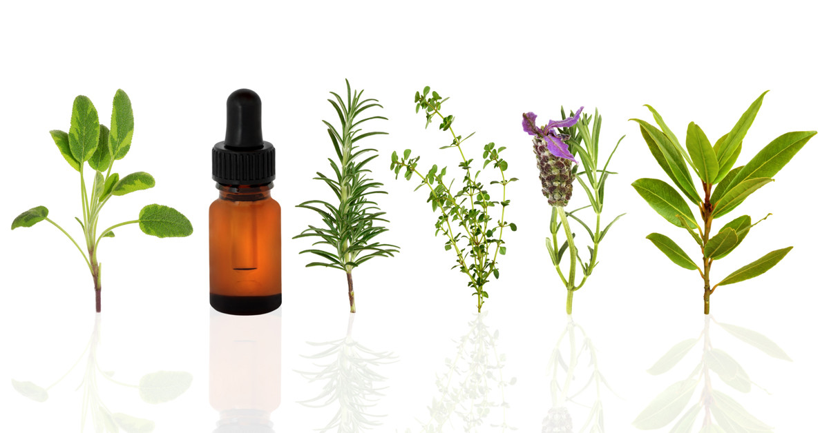 The Essence - Young Living - Header 01